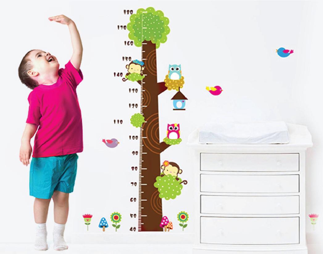 Chùm ngây giúp trẻ tăng chiều cao