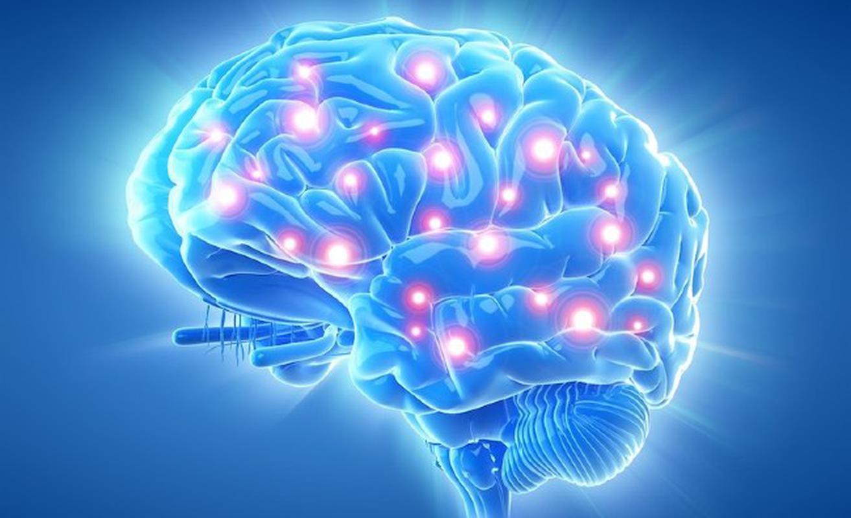 Hỗ trợ chức năng não