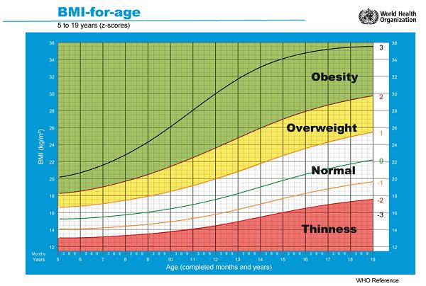 Biểu đồ chỉ số BMI cho thanh thiếu niên